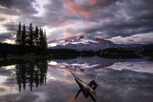 Sunrise, pink sky, mt Rundle, Two Jack Lake, banff national park, alberta, canada