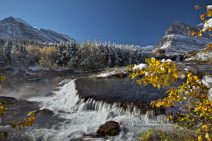 Swiftcurrent Falls,  golden aspen, autumn, fall colors, tall peaks, jagged mountains, Glacier National Park, babb, montana, many glacier, Mount Grinnell ,pristine