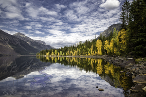 Lake McDonald, Autumn, fall colors, golden aspen, yellow trees, reflection, calm water, peaceful, Glacier National Park, West Glacier, Montana