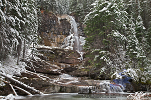 Virginia Falls, new snow, autumn snow, Snow laden trees, forest, creek, mountan stream, Glacier National Park, saint Mary, Monana
