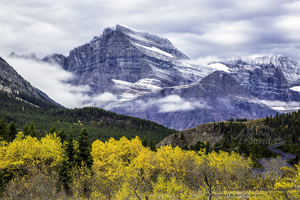 Mt. Gould, autumn, fall colors, golden aspen, new snow, jagged peak, frosting, cloudy sky, Glacier National Park, babb, montana