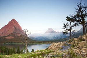 windblown trees, mount Grinell, Swiftcurrent Lake, Mount Wilbur, blue sky, red mountain, twisted trees, fog, glacier national park, babb montana, wilderness, jagged mountains, alpine landscape,,