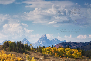 Grand Tetons, Gros Ventre River Valley, Jackson Hole, Wyoming, autumn, fall colors, golden aspen,