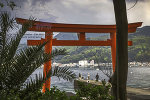 Torii Gate, Izu Peninsula, Heda Port, fishermen, Japan