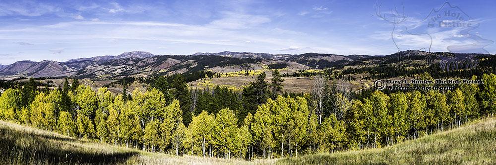 Salt River Pass, Afton Wyoming