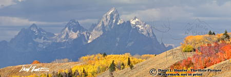Grand Tetons, Teton range, Bridger Teton National Forest, autumn, Grand Teton Park, yellow aspens, red aspens, autumn.