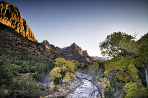 The Watchman, evening glow, virgin river, golden cottonwood trees, red sandstone, Zion Naitonal Park, blue sky