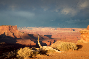Desert storm, colorado plateau, canyonlands national park, thunderstorm, Moab, Utah, weather
