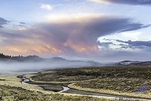 Stormy Yellowstone Sunrise, Hayden Valley.
