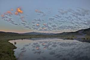 Slough Creek, Sunrise, reflection, calm water, peaceful, tranquil, Yellowstone National Park, trout creek