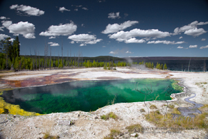 Abyss Pool, West Thumb Geyser Basin, Yellowstone National Park, clear water, green water, thermal feature,