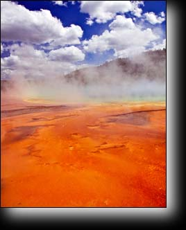 Thermophiles of Grand Prismatic Spring, orange