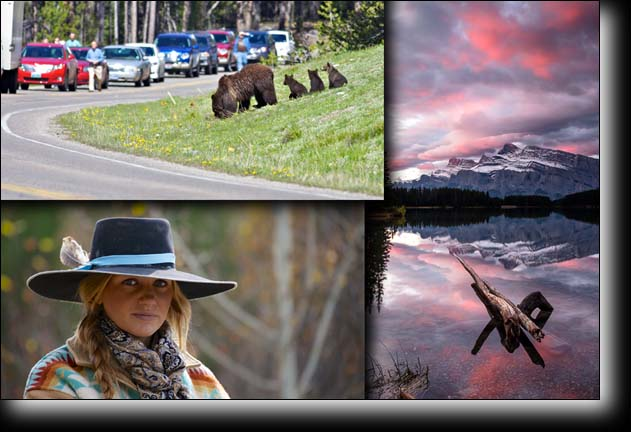 Cowgirl, Two Jack Lake, grizzly 399